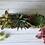Thumbnail: CONCRET succulent