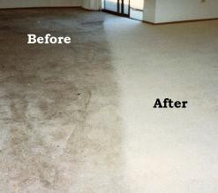 Clean Carpet are a must