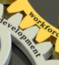 workforce deve.jpg