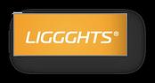 LIGGGHTS.png