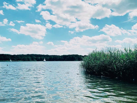 THE BEACH SERIES.                   Frensham Beach: the perfect alternative for lazy Londoners