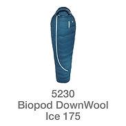 Ice175.jpg