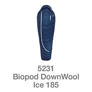 Ice185.jpg
