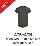 WoodWool-T-Shirt-Mr-Kirk-Bayberry-Green.