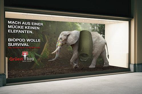 Schaufenster - Mache aus einer Mücke keinen Elefanten
