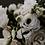 Thumbnail: Biweekly Flower Subscription