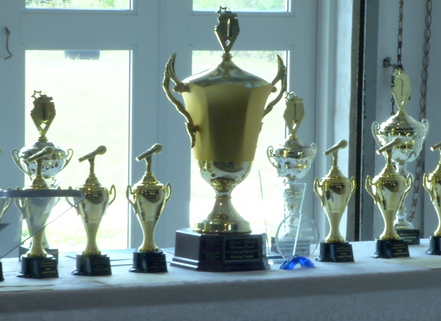 trophies 2.png
