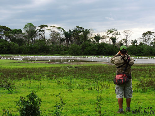 Birding during dry season.jpg