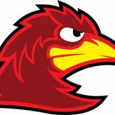 bird_mascot_white_back.png