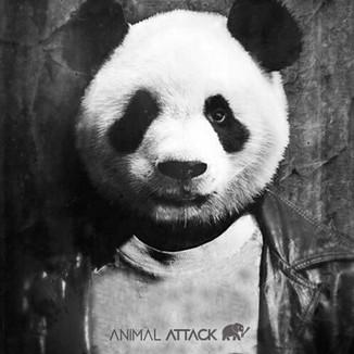pandaattack.jpg