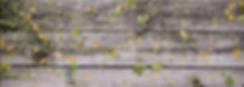 доска с цвет.png