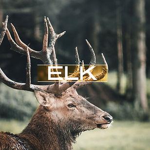 elk_v3.jpg