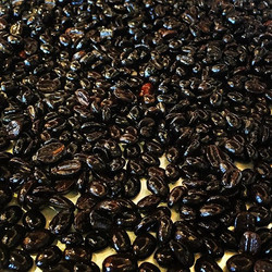 Soaked coffee beans in #whiskey for a day and a half, let them dry out, then made a pot of coffee wi