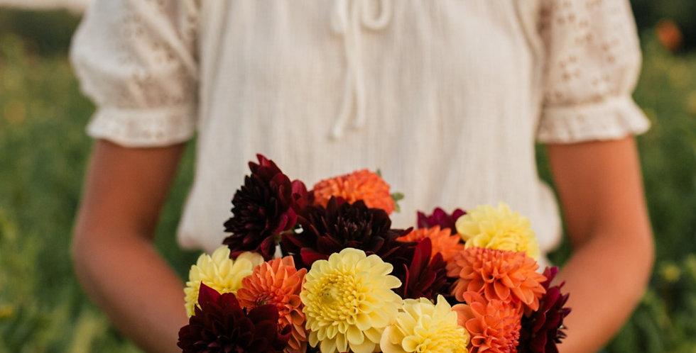 Mix (Fall Colours)