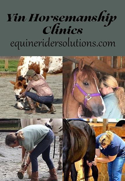 Yin Horsemanship Ad.jpg