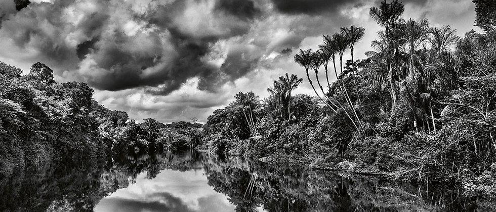 Jean-Michel Jarre - Amazonia