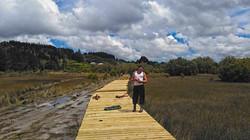oto-wetlands-path