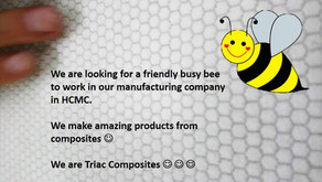General Accountant required for Triac Composites, HCMC