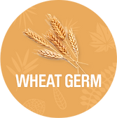 Wheat_Germ_1200x.png