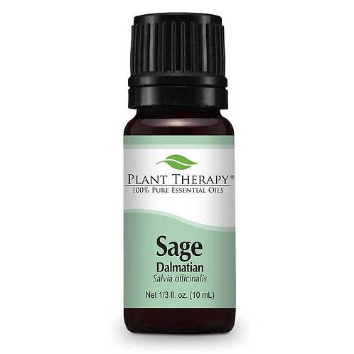 Plant Therapy Sage Dalmatian Essential Oil