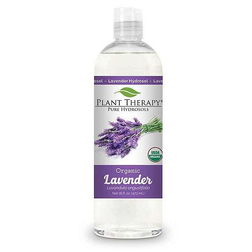 Plant Therapy Lavender Organic Hydrosol
