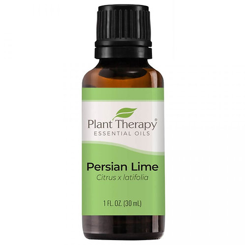 Plant Therapy Persian Lime Essential Oil