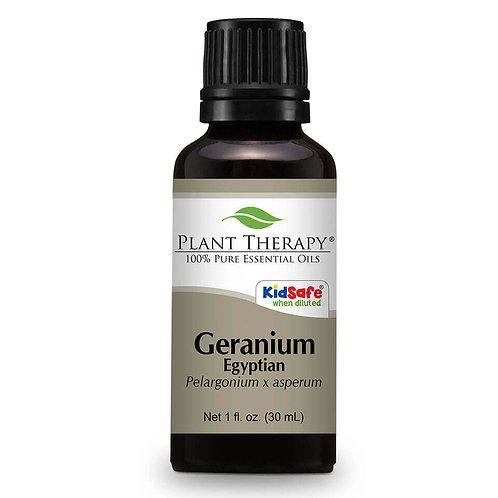 Plant Therapy Geranium Egyptian Essential Oil
