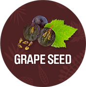Grapeseed_1200x.png