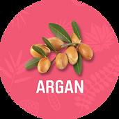 Argan_1200x.png