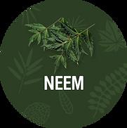 Neem_1200x.png