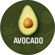 Avocado_1200x.png