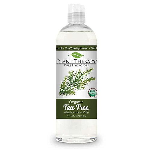 Plant Therapy Tea Tree Organic Hydrosol