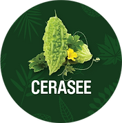 Cerasee_1200x.png