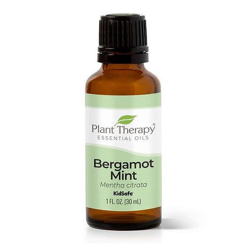 Plant Therapy Bergamot Mint Essential Oil