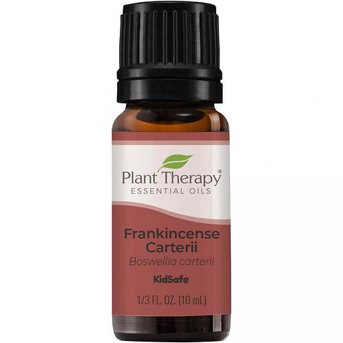 Plant Therapy Frankincense Carterii Essential Oil
