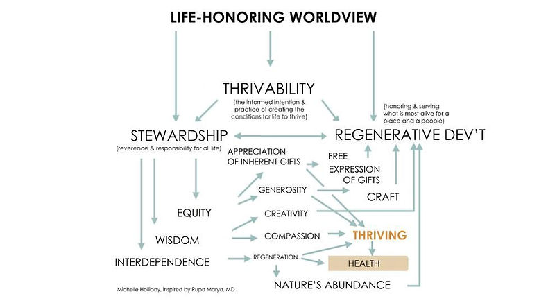 Life-Honouring Worldview Diagram.jpeg