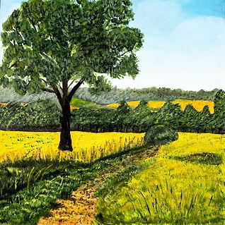 #19001 - Lane in the Field.jpg