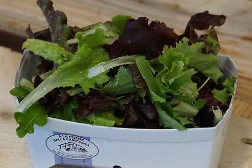 Schnittsalat