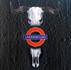 """""""Underground"""" 2018"""
