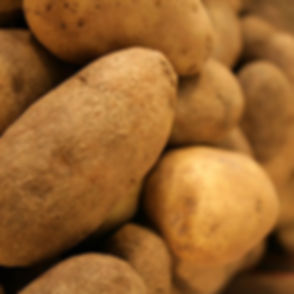 Idaho-Potatoes-e1369405744358.jpg