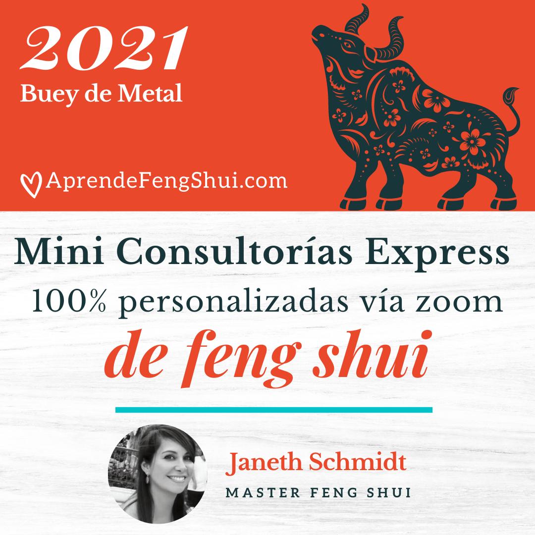 Mini Asesoria Express Feng Shui