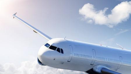 Flight 879 | 2023