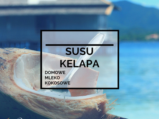 Susu Kelapa – Domowe Mleko Kokosowe