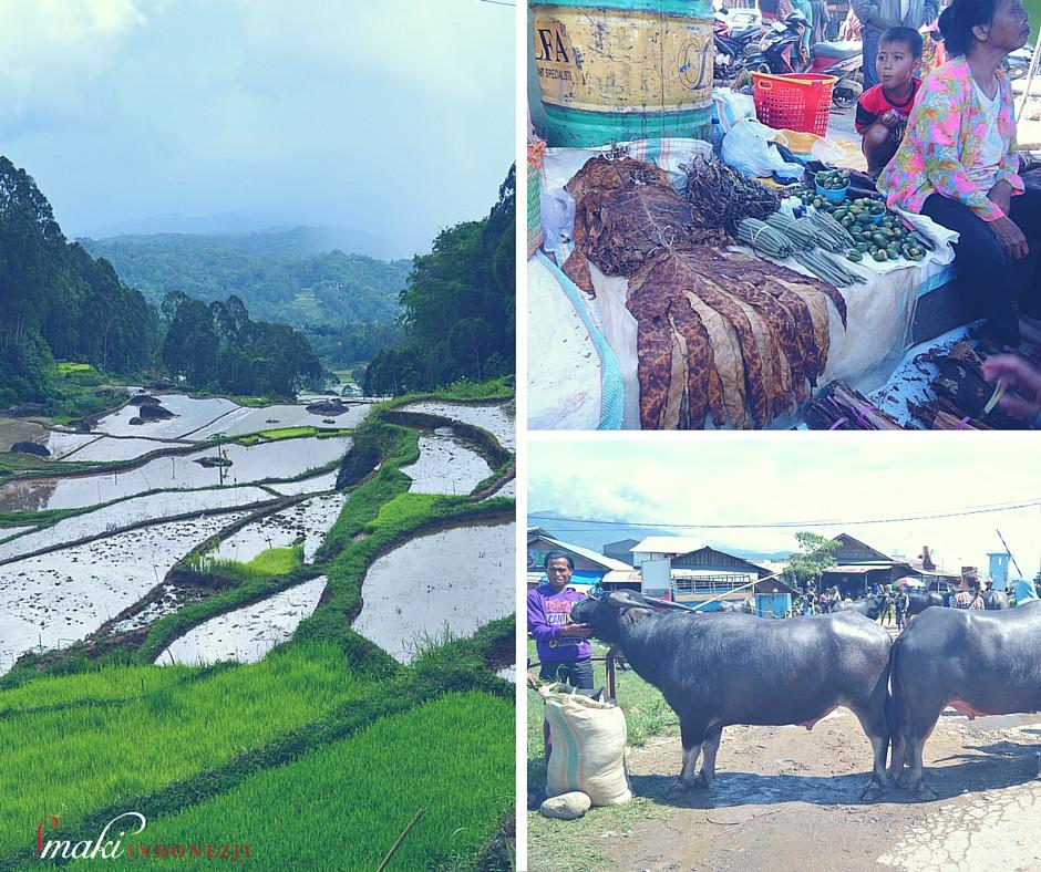Tana Toraja od Kuchni, Podróże kulinarne, Smaki Indonezji - Kuchnia Indonezyjska