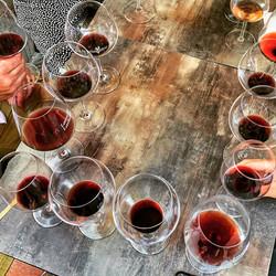 wine tasting super toscana