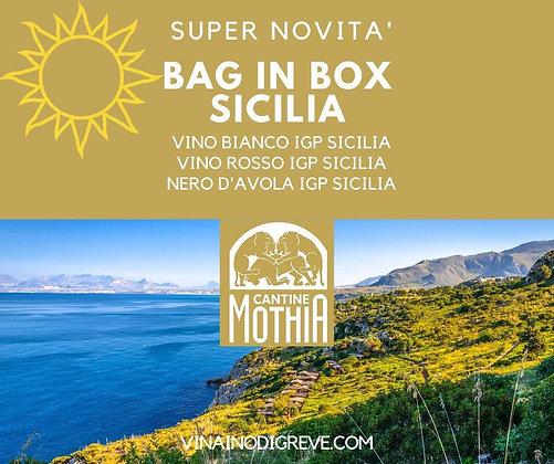 Vino Bianco IGP SICILIA 5lt