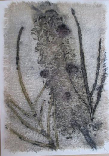 Grevilia card [2014]