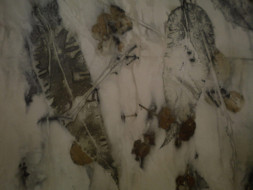 Eucalyptus [2010]