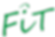 Logo_FiT_nurSchrift_schräg_Kopie.png