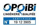 LOGO CERTIFICATION CUBE OPQIBI.jpg